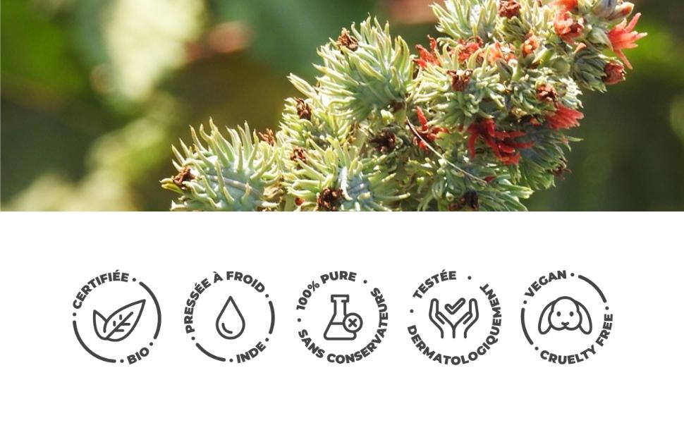 Bionoble huile de ricin bio pour la barbe